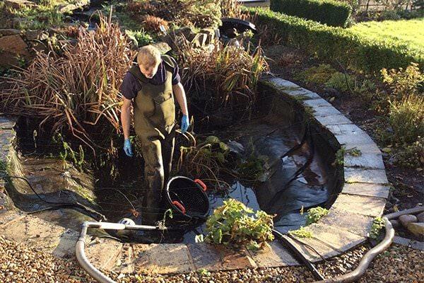 pond-maintenance