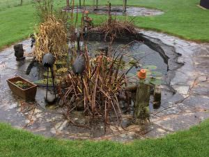 Pond Clean Project 6