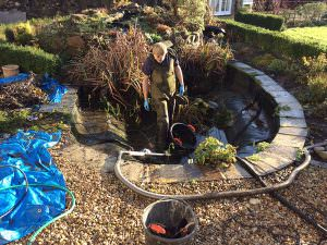 Pond Clean Project 7